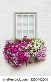 White brick wall with one window and flowers in flower box