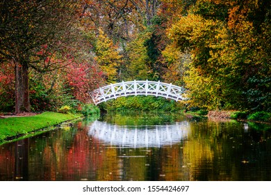 White bridge over pond in autumn Park. Colorful autumn background in garden  with red and gold yellow foliage. Vivid golden fall in woodland, november