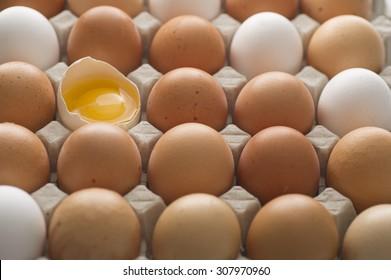 White and brown fresh organic eggs.