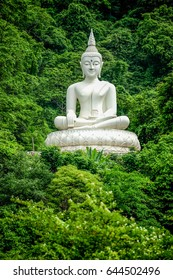 White Buddha Image on hill surrouned by trees