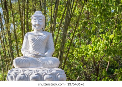 White Buddha statue in the forest