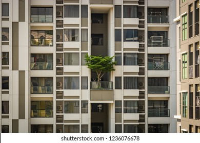 White building in Bangkok with a green tree on the balcony, a building with windows and balconies, Thailand