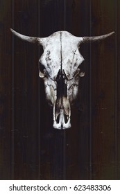 White bull's skull with horns on the background of wooden boards