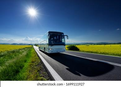 Weißer Bus, der auf der Asphaltstraße zwischen den gelben blühenden Rapsfeldern unter strahlender Sonne in der ländlichen Landschaft fährt