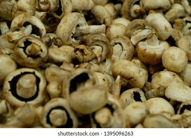 white button mushroom, for cooking,  able mushroom, cultivated mushroom, button, champignon (de Paris)