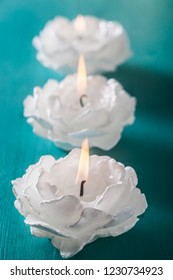 White Candles-flowers on wooden background.
