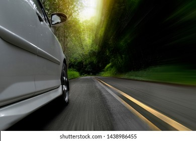 The white cars driving speed on the asphalt road head to the deep forest.