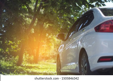 White cars parked on the roadside, with natural backgrounds and with bright sunlight.