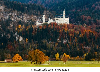 White castle with yellow autumn trees in foreground