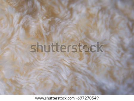 white cat flur background