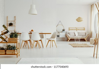 White chairs at dining table in bright apartment interior with plants and wooden couch. Real photo