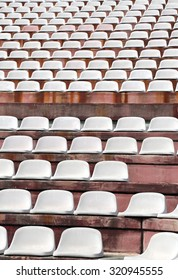 white chairs in empty stands of a modern Stadium before the sporting events