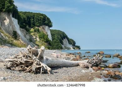 White chalk cliffs and fire stone beaches at the National Park Jasmund near Sassnitz on the German island Rügen