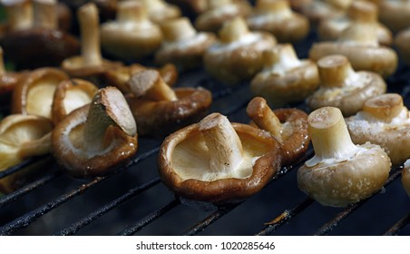 White champignon common mushrooms and black Chinese shiitake mushrooms cooked on char grill, close up, high angle view