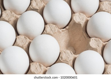 White chicken eggs in a cardboard box with empty space, background
