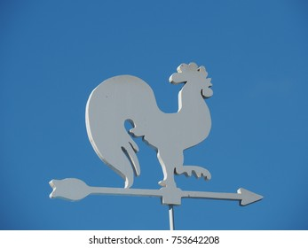 white chicken wind direction in the blue sky background