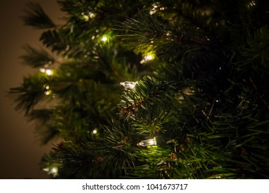 White Christmas lights on tree