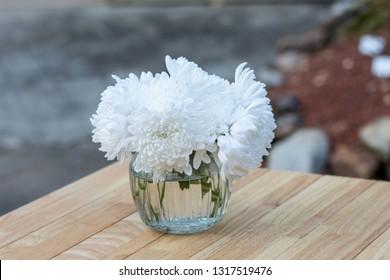 white chrysanthemum flower in glass vase on table