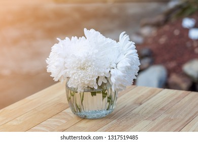 white chrysanthemum flower in glass vase on table and sunlight