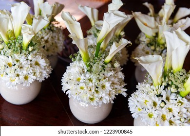 White chrysanthemums and Callas in pots for the wedding ceremony decorations.
