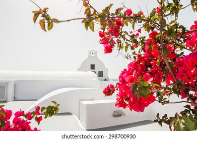 White church and red flowers. Oia town, Santorini island, Greece. Selective focus