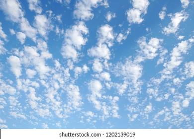 White cirrocumulus clouds in the blue sky