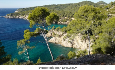 From the white cliffs of the Sentier du Littoral, the hiker will have stunning views on the blue and turquoise see