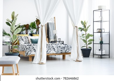 White cloth covering bed and ficus trees in floral bedroom interior with plants and lamp on nightstand