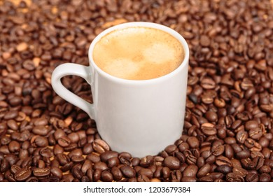 White Coffee Mug over Coffee Beans