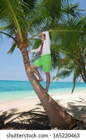white collar worker climbing on palm tree to get a better view