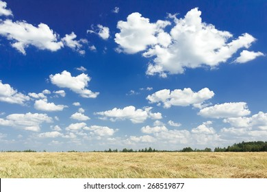White color cumulus on aero blue sky above harvested grain goldenrod yellow color straw field