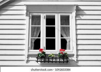 White color wooden house with  red color flowers