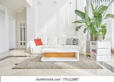 White Concept Living Room Interior