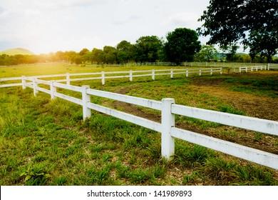White concrete fence in horse farm field