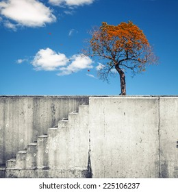 White concrete wall with stairway and small autumnal tree above blue sky