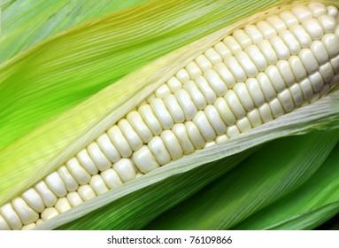 White corn.