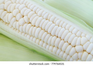 White corn ears