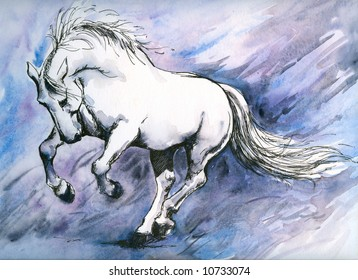 White crazy horse watercolor painted.Picture I have painted myself.
