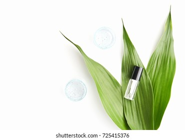 White cream bottle placed, Blank label package for mock up on a green foliage background. The concept of natural beauty products.