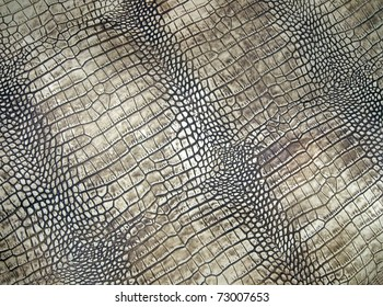 white crocodile skin pattern, abstract danger texture closeup.