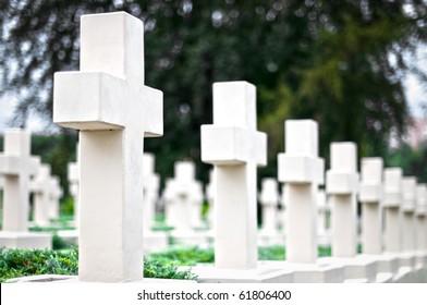 white crosses on the graves of warriors at Lviv cemetery, Ukraine
