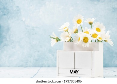 White cube calendar for May decorated with daisy flowers over blue background with copy space