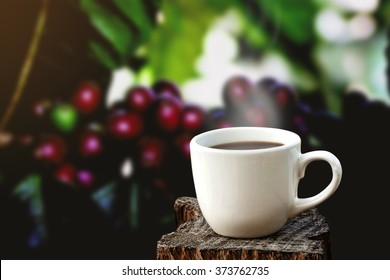 white cup of coffee on wooden plate over blurred fresh coffee bean in dark background.