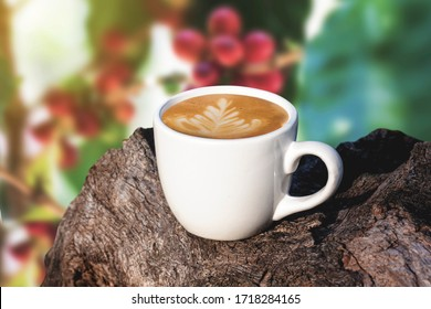 white cup of coffee or tea on wooden plate over blurred plantation of coffee tree with sun lighting.
