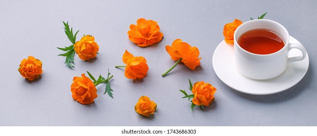 White Cup of tea with fresh ornage flowers on gray background. Banner, springtime summer seasonal morning brakfast concept