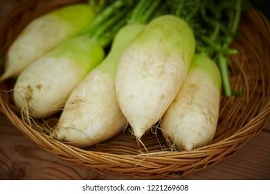White daikon radish