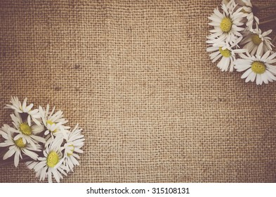 white daisies blossoms on a  natural burlap surface - decorative backgrounds