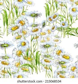 White daisies on a white background, pattern seamless