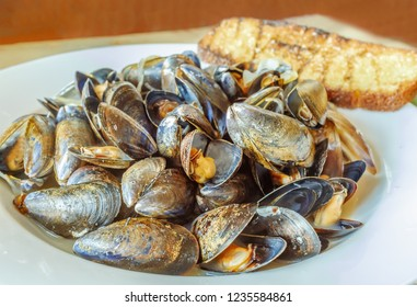 white dish full of steaming hot cooked mussels with open shells in a tasty sauce and served with toasted garlic sourdough on a wooden table