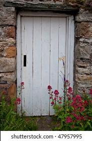 White door and flowers